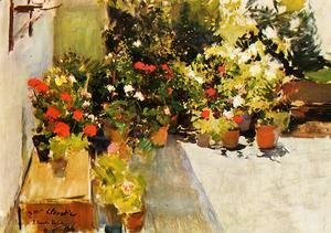 Joaquin Sorolla y Bastida - A Rooftop with Flowers
